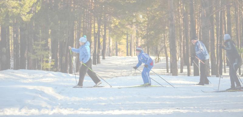professeur de ski comptabilité